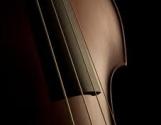 D Bass 2